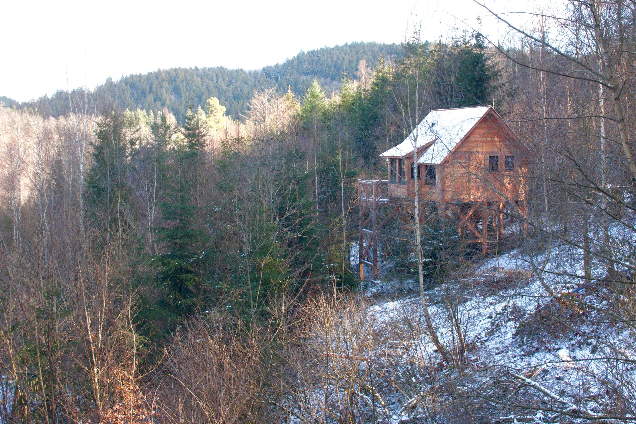 Chalet sur pilotis en bois sur mesure tiny house 1
